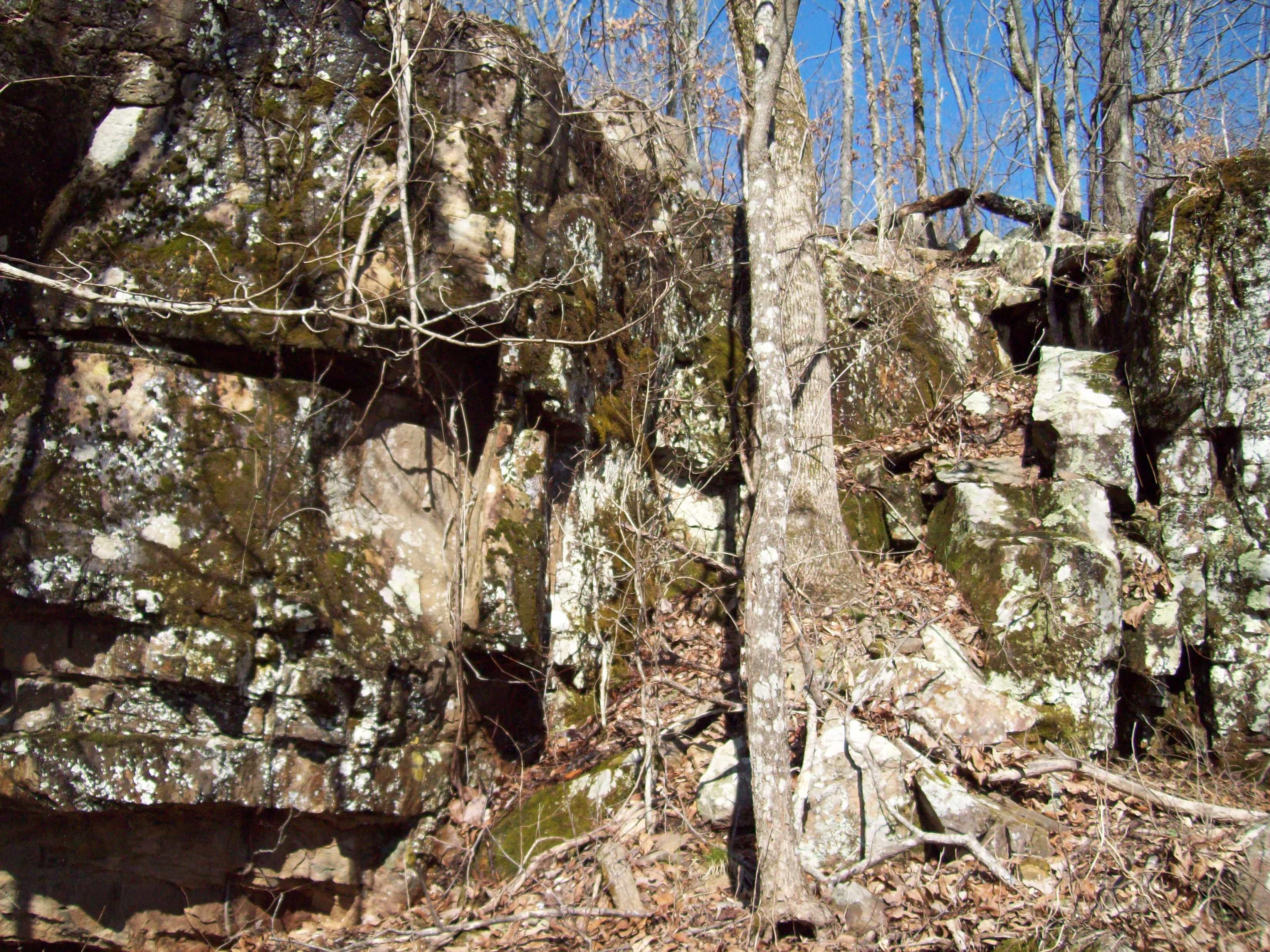 update* SOLD...forty acres in the Arkansas Ozarks (Permaculture Real ...