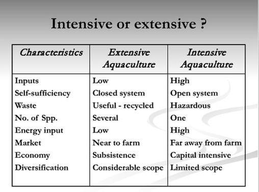 [Thumbnail for Comparison-Extensive-vs-Intensive-Fish-Farming.JPG]
