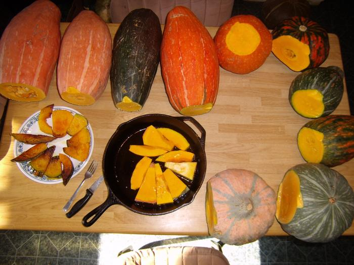 [Thumbnail for squash-tasting-seed-saving.jpg]