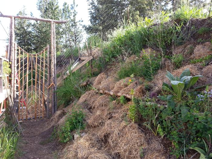 New gate and hugel berm