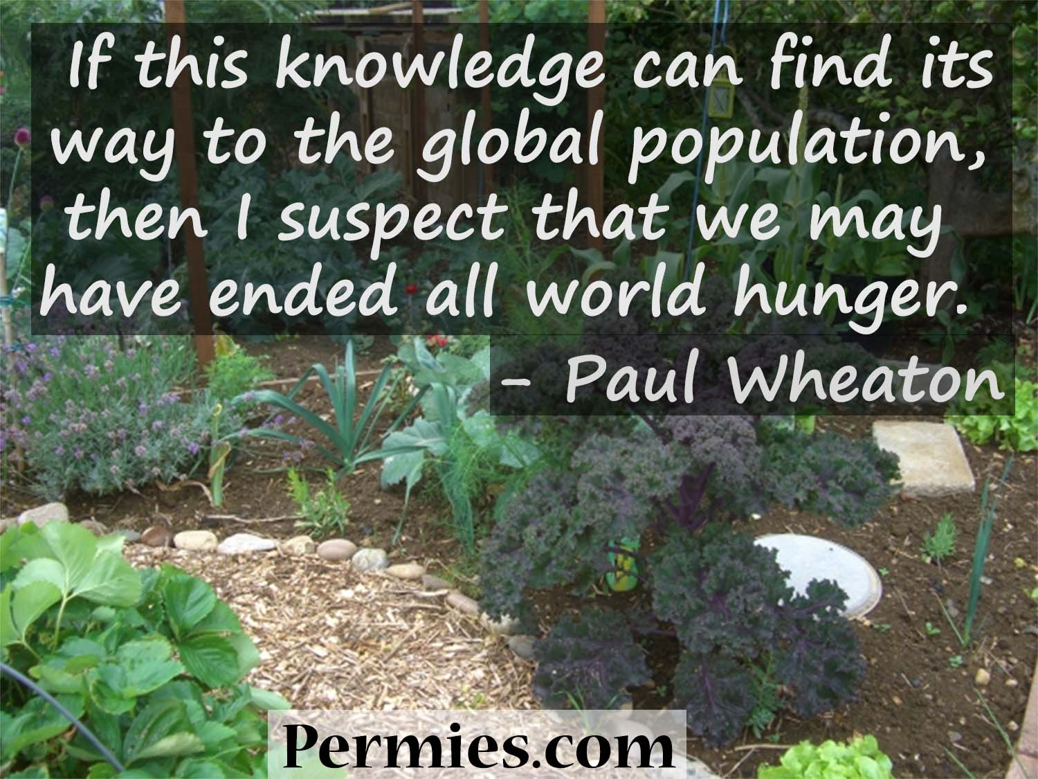 end world hunger through permaculture meme