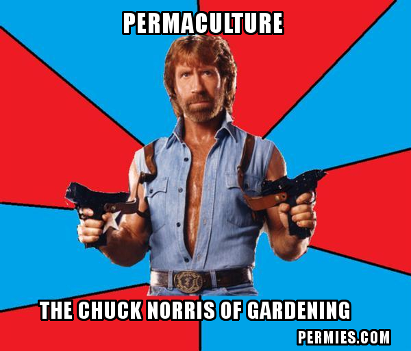 [Thumbnail for Chuck-Norris-Permaculture.jpg]