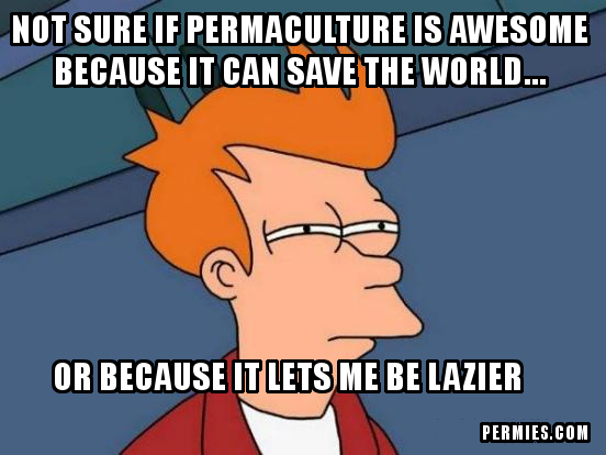 [Thumbnail for Futurama-Fry-Lazy-Permaculture.jpg]