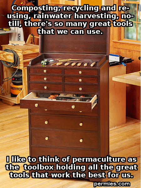 [Thumbnail for Wood-Toolbox-Permaculture.jpg]