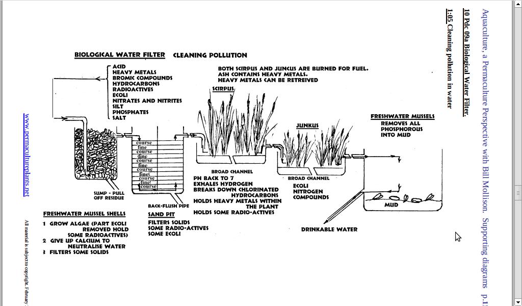 Bog 800 600 pond bog filter ideas and for Bog filter design