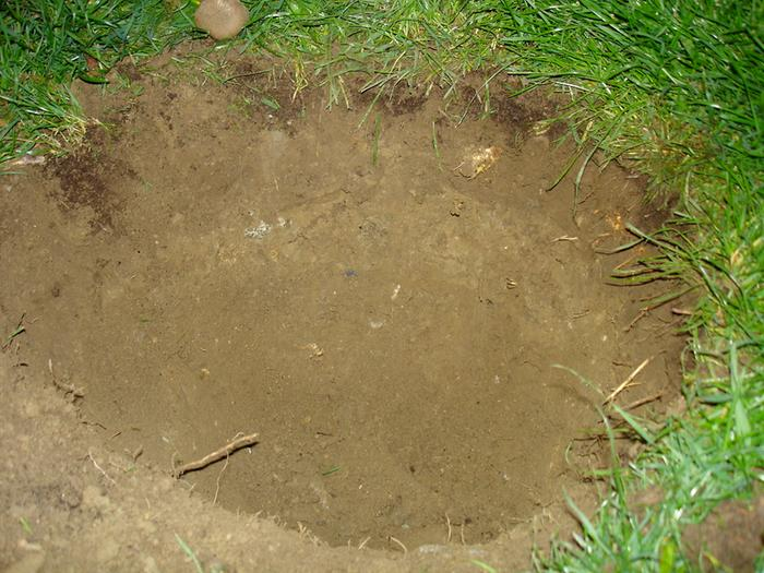 digging hole in the lawn