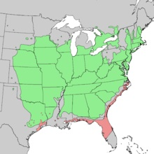 [Thumbnail for Juniperus_virginiana_vars_range_map_3.jpg]