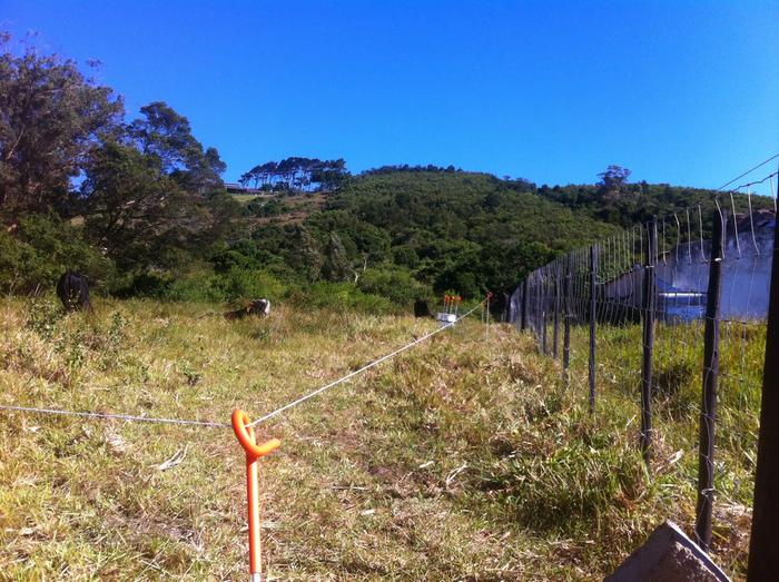 [Thumbnail for 20140119 electric fence.JPG]