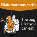 diatomaceous earth article