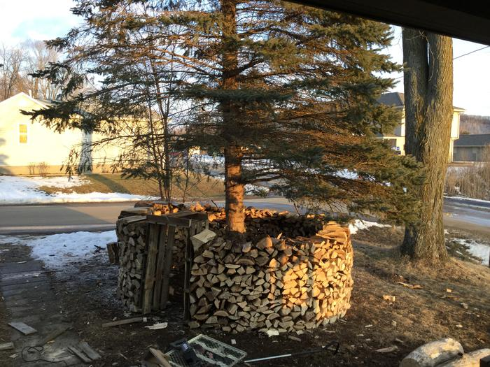 Woodpile/fort