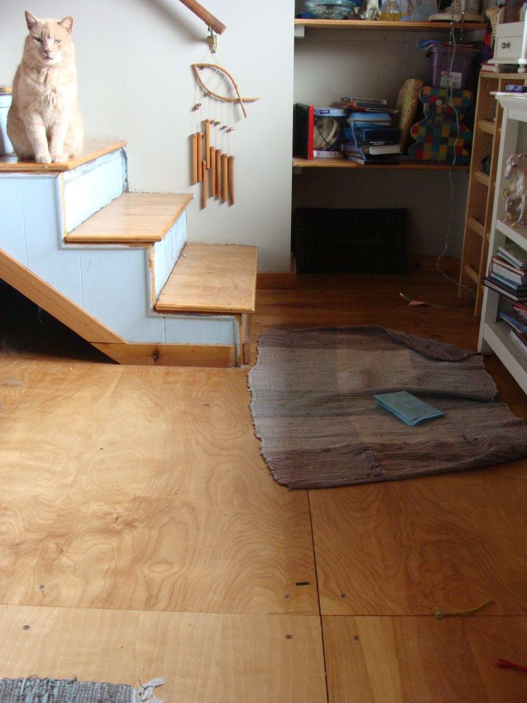 Painting Sealing Indoor Plywood Floor Finishes Forum At