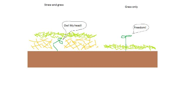 [Thumbnail for straw vs grass example.png]