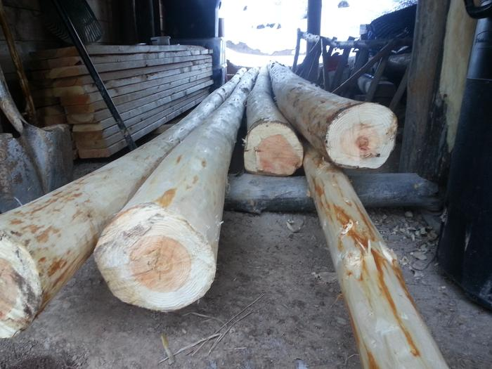 some peeled logs