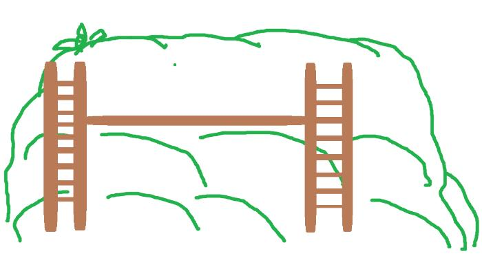 [Thumbnail for hugel-berm-ladders.png]