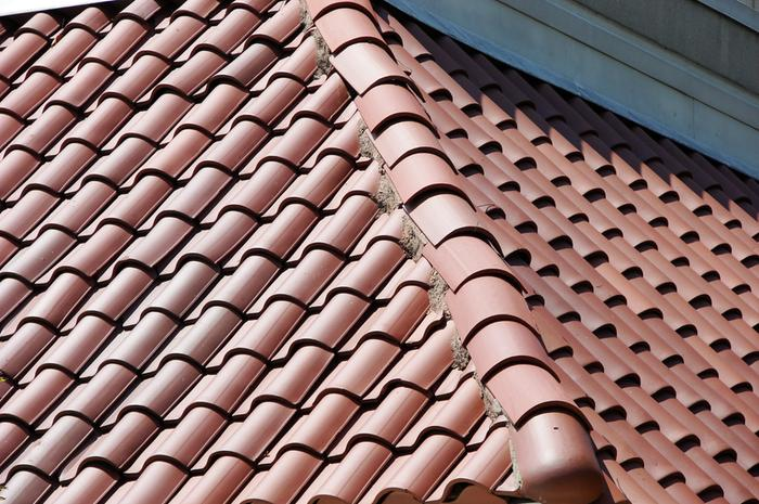 [Thumbnail for Roof-Tile-3149.jpg]