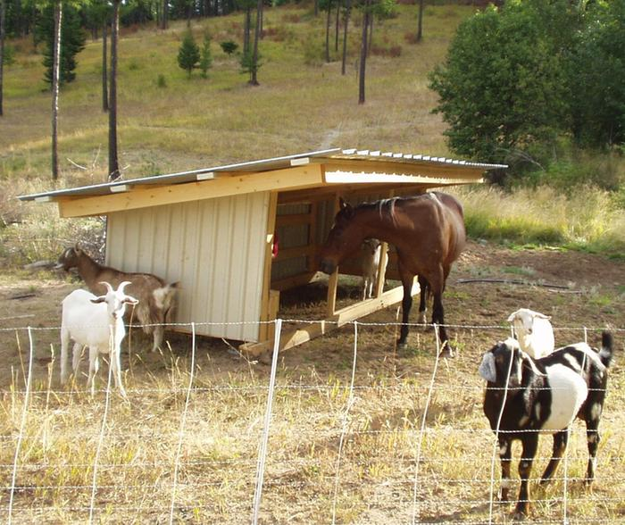 [Thumbnail for skiddable-goat-shed-a.jpg]