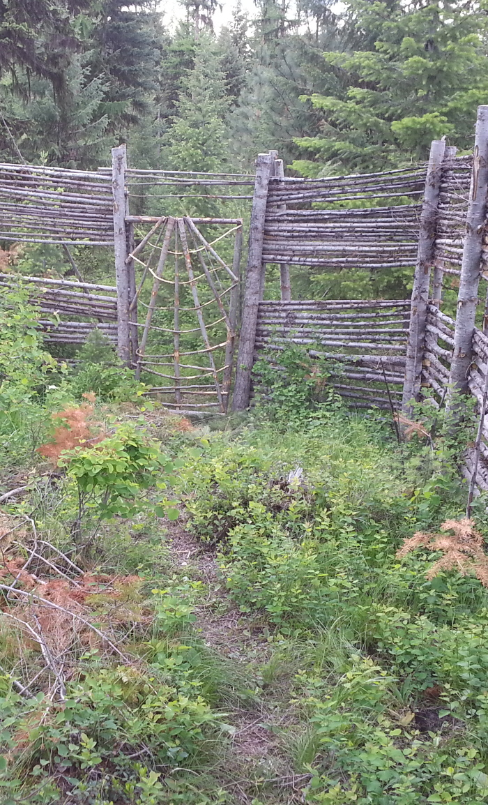 [Thumbnail for wood-deer-fence-gate.jpg]