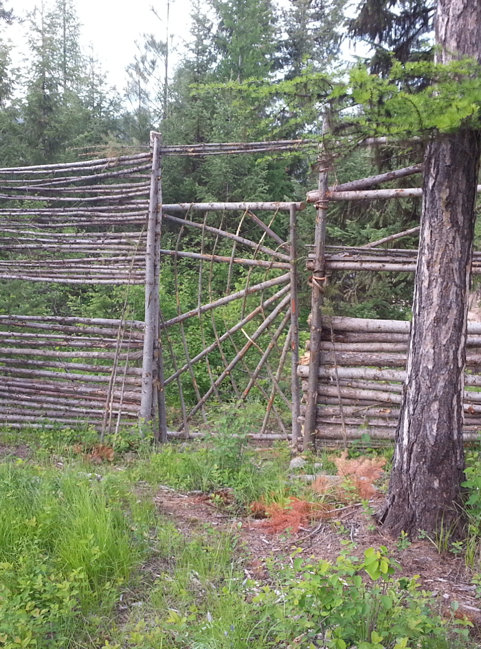 [Thumbnail for wood-fence-gate.jpg]