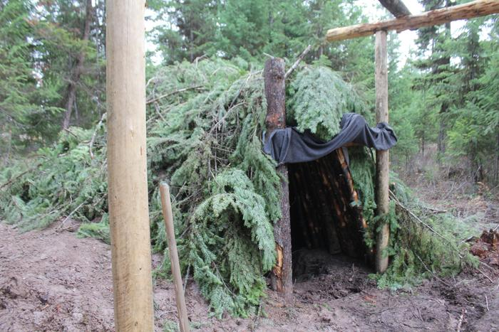 bear den debris shelter house