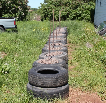 [Thumbnail for IMG_1394.JPG-tires-2.JPG]