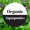 organic aquaponics