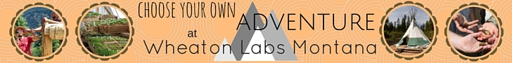 Activities at Wheaton Labs