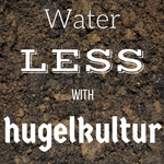 Water less with hugelkultur!