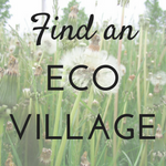 Find an eco village in your area!