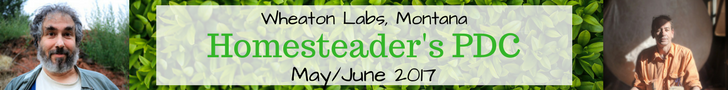 Homesteader's PDC Wheaton Labs 2017