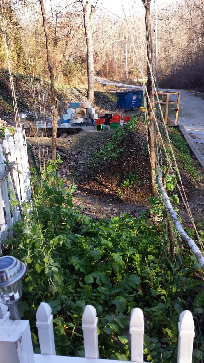 [Thumbnail for 12-13-2015-whole-garden.jpg]