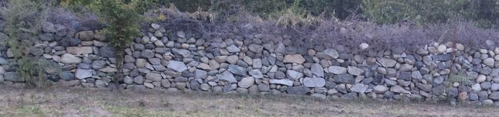 [Thumbnail for Stone wall with thorns on top in Nubra.jpg]