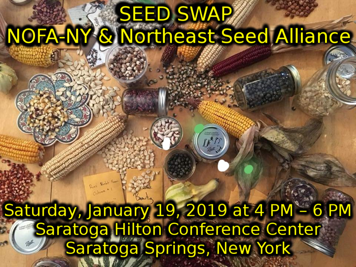 [Thumbnail for saratoga-spring-seed-swap.png]