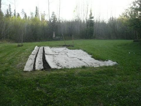 [Thumbnail for 20-May-12-20x40-Garden-started.JPG]