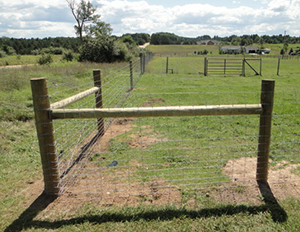Fence corner options question (homestead forum at permies)