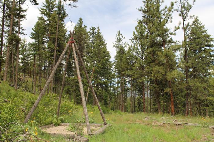 [Thumbnail for tent-site-tipi-DIY-camping-montana-permaculture.JPG]