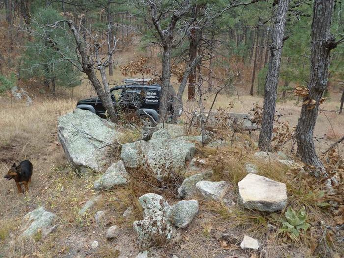 [Thumbnail for Moss-rock-natural-setting-Crestone-Canyon-Jeep-Lilly.JPG]