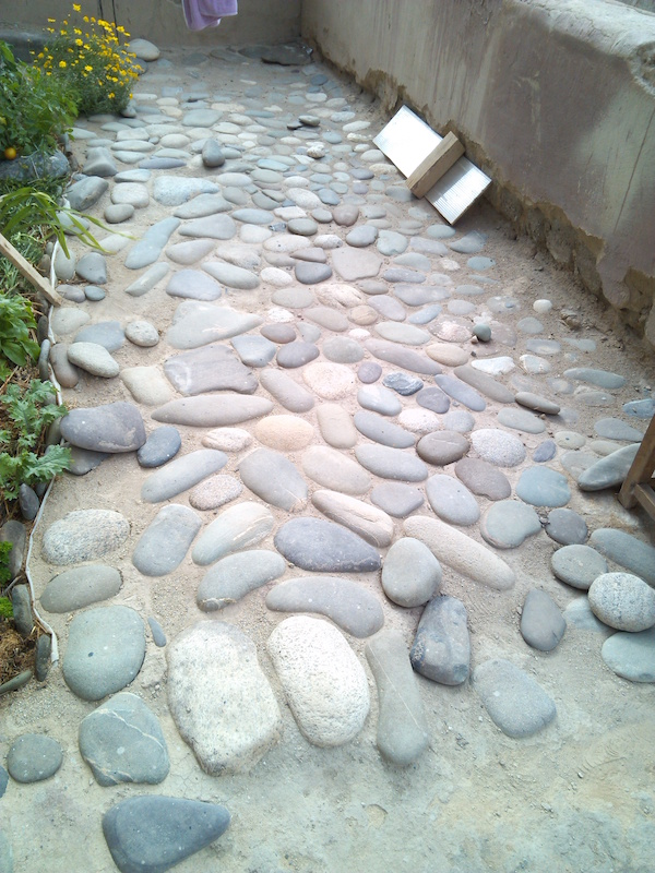 [Thumbnail for Stone-paving-in-my-greenhouse-2016Jul31.jpg]