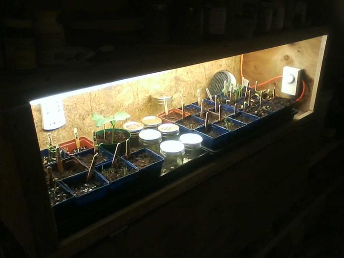 [Thumbnail for germination-testing-chamber.jpg]