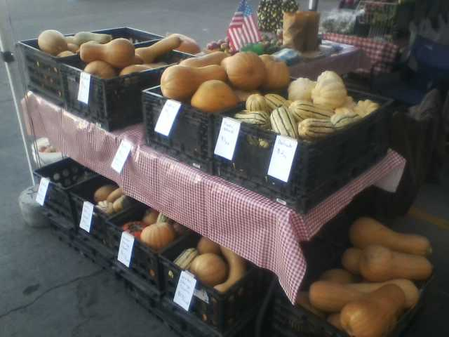 [Thumbnail for squash-at-farmers-market.jpg]