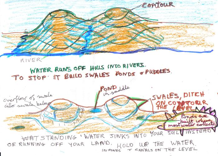 [Thumbnail for oercikation ponds and swales..jpg]