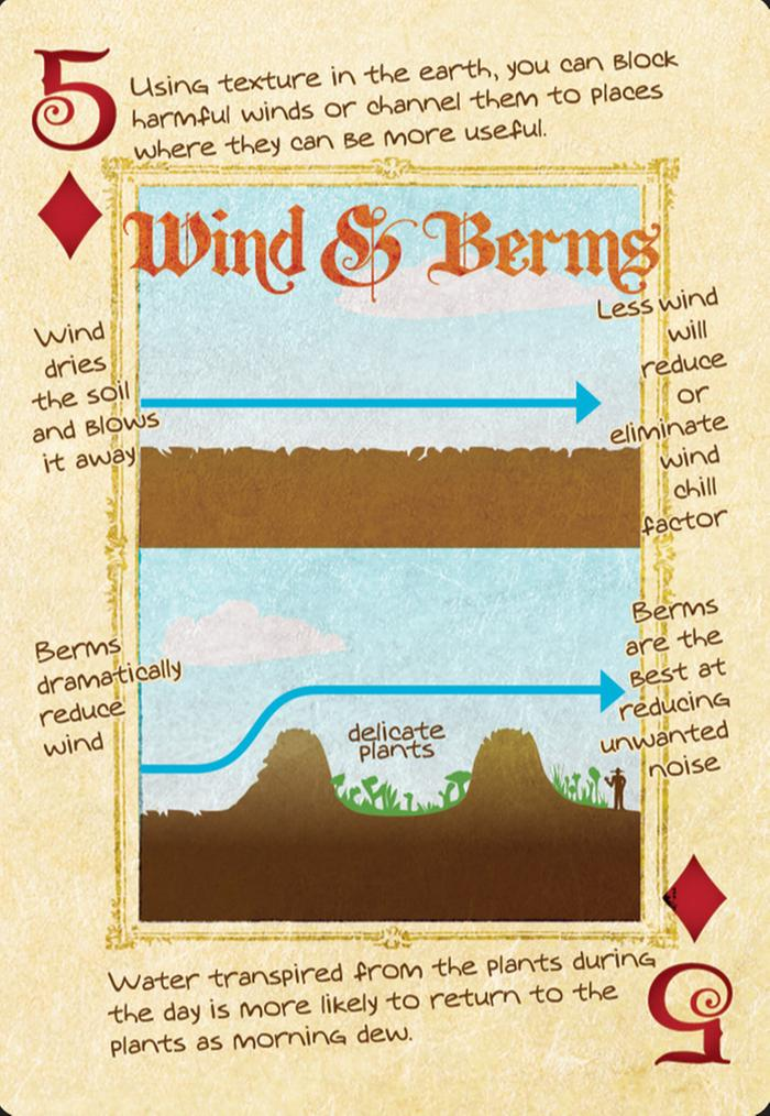 [Thumbnail for permaculture-wind-berms.jpg]