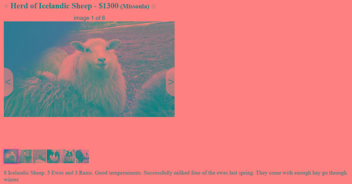 [Thumbnail for Iceladic-Sheep.PNG]