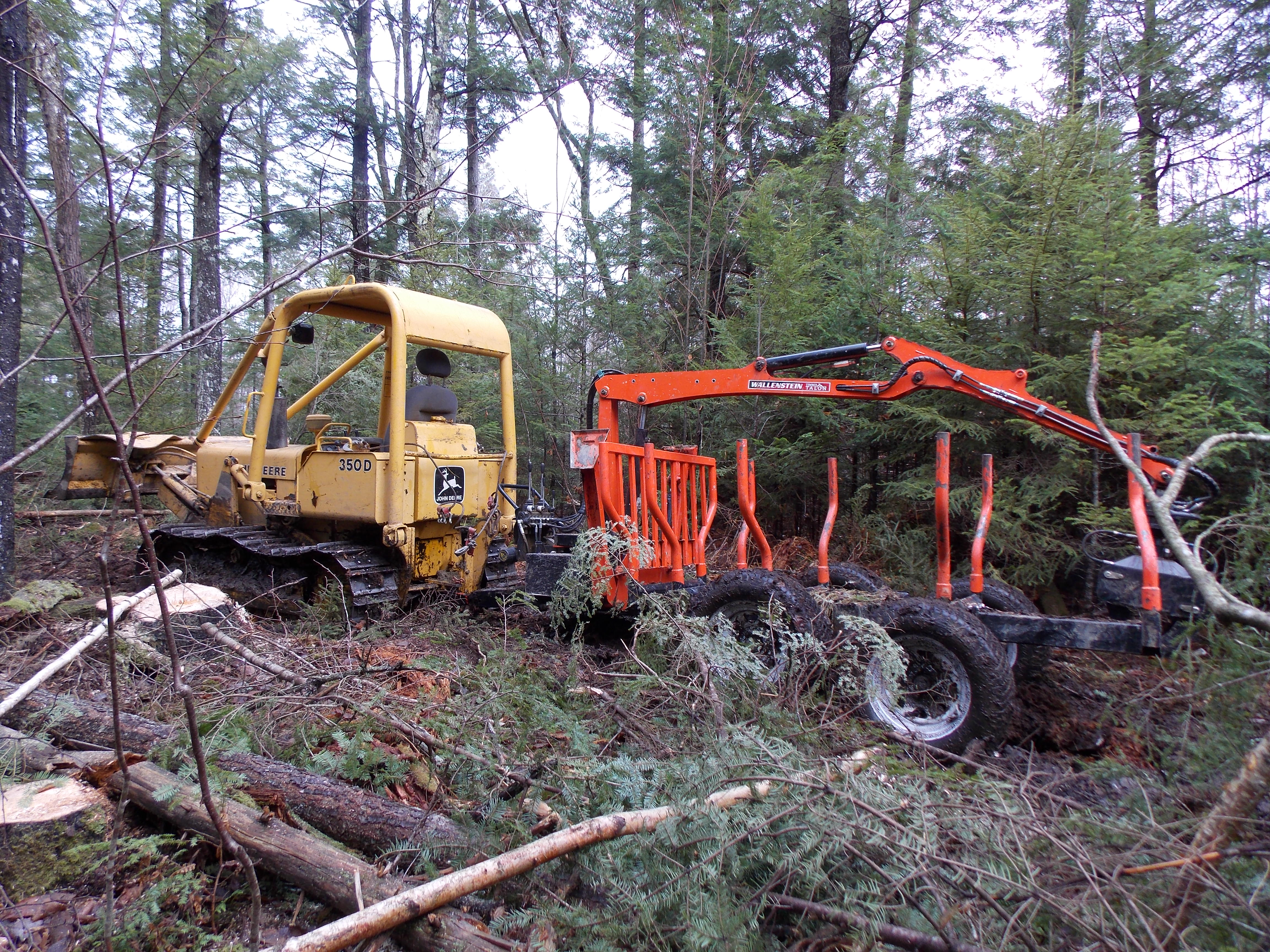 Soil compaction due to Bobcat? (forest garden forum at permies)