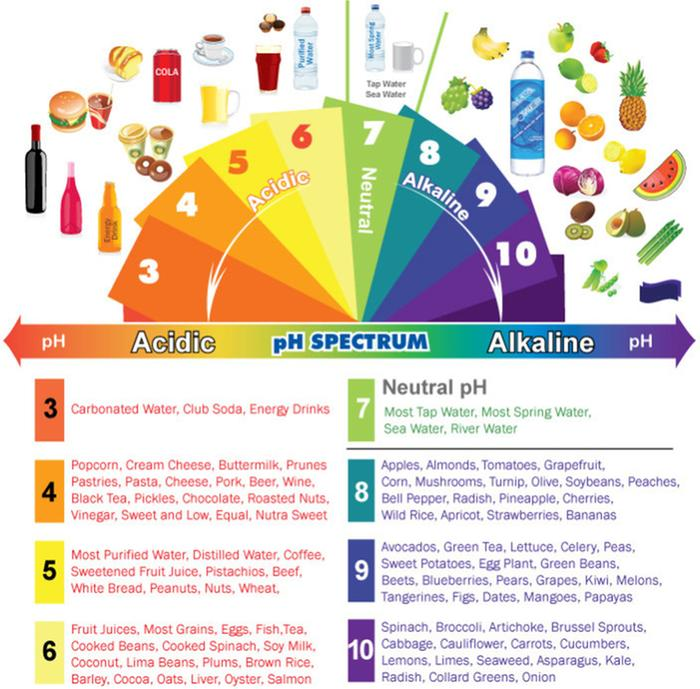 [Thumbnail for acidic-alkaline-phchart.jpg]
