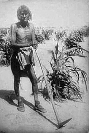 [Thumbnail for Hopi_with_corn-about-1910.png]