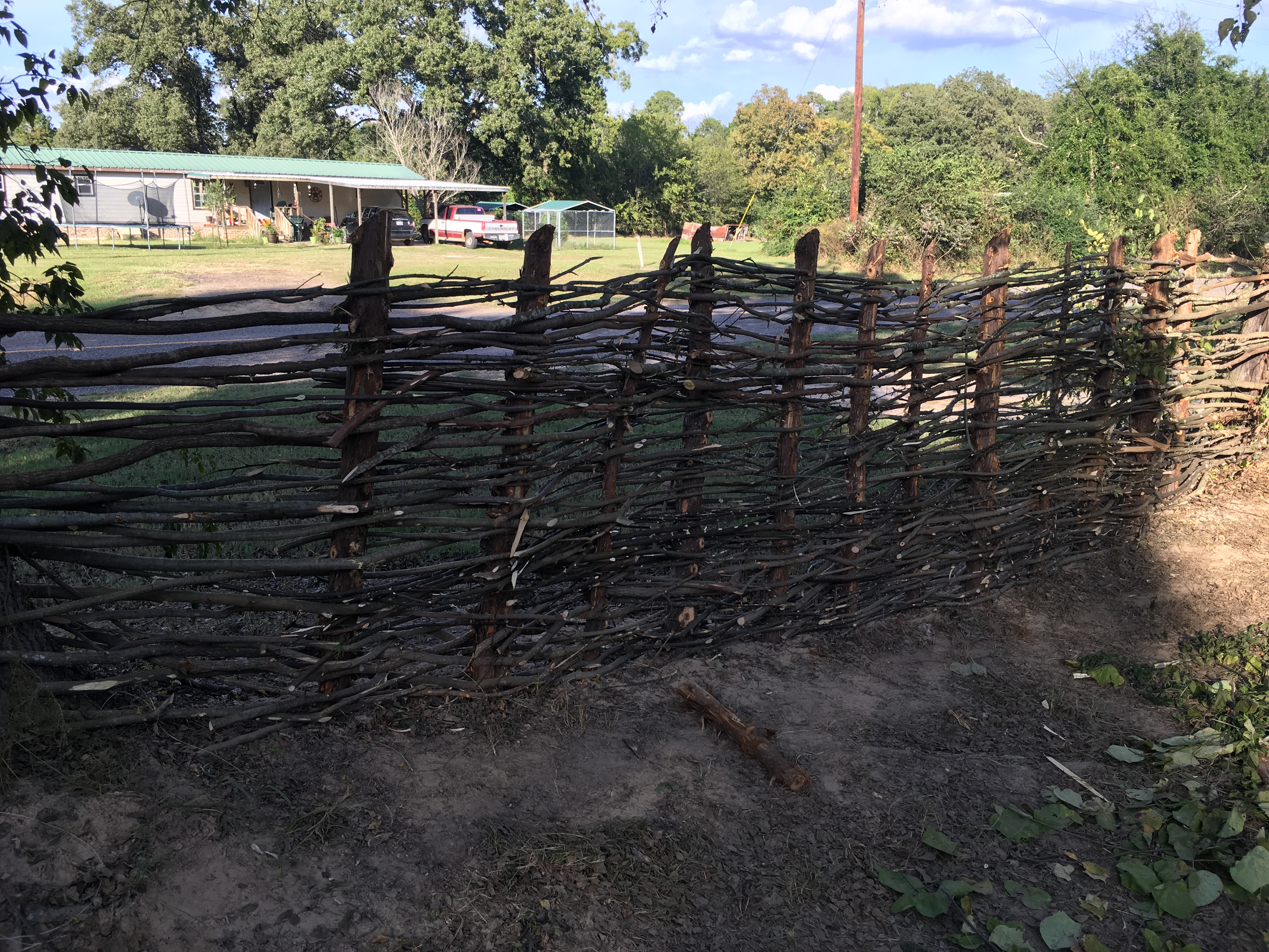 Options to replace my fence (fencing forum at permies)