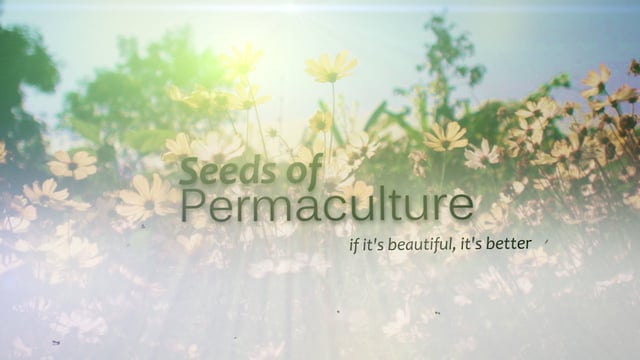 [Thumbnail for Seeds_of_Permaculture_-_Christian_Shearer.jpg]