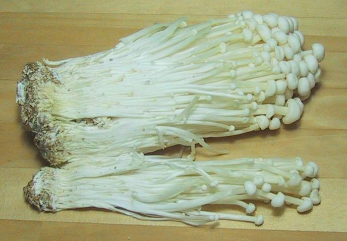 [Thumbnail for MEDICINAL-Enokitake_Japanese_Mushroom_anticarcinogenic_by_Chris_73-_WikiMedia.org.jpg]