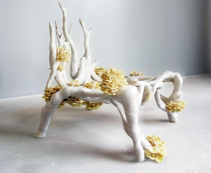[Thumbnail for Mycelium_chair_3D_printed_by_Eric_Klarenbeek.jpg]