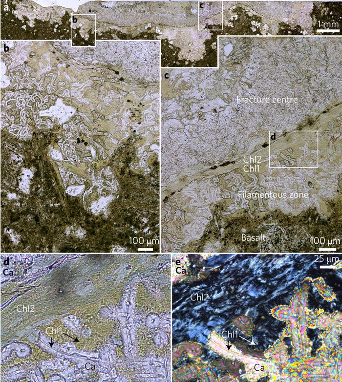 [Thumbnail for OLDEST_2.4_billion-y.o._fungus_Calcite-and_chlorite-filled_fracture_with_filamentous_fossils_in_Ongeluk_vesicular_basalt-_petrographic_thin_section-_Swedish_Museum_of_Natural_History_X6133-_Nature.com.jpg]